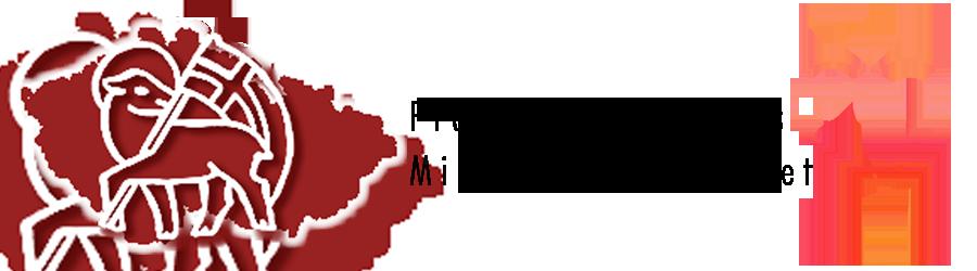 Magyar Bohémia